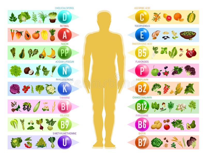 تغذیه در بیماران ضایعه نخاعی